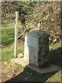 ST9899 : Thames Head marker stone by John M