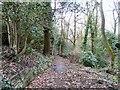 SJ9493 : Pole Bank Path by Gerald England