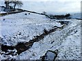 SD9591 : Newbiggin Beck in winter by James Allan