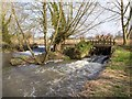 SP1258 : Weirs on the River Alne by David P Howard