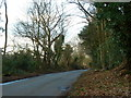 TQ0093 : Gorelands Lane by Alexander P Kapp