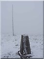 NY8144 : Trig pillar and mast on Kilhope Law by Oliver Dixon