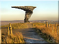 SD8528 : Singing Ringing Tree by David Dixon