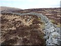 NX5266 : Old drystane dyke in the valley of the Mid Burn by Richard Law