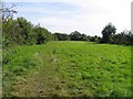 TL3876 : Footpath to Earith by Andrew Tatlow