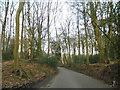 TQ0191 : West Hyde Lane going through Bloom Wood by David Howard