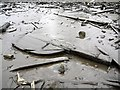 NZ1665 : Rudder in debris field of Ryton Wherries, west of Newburn Bridge by Andrew Curtis