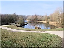TQ1625 : Lake in Southwater Country Park by Paul Gillett