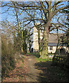 TL4268 : Rampton: the approach to All Saints' Church in early spring by John Sutton
