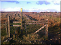 SD9830 : Fence and stile on Black Hill by Phil Champion