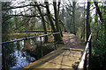 SP0583 : Bridge over the weir, Edgbaston Pool dam by Phil Champion