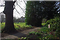 SP0583 : In the gardens at Winterbourne by Phil Champion