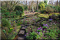 SP0583 : The sandstone rock garden at Winterbourne by Phil Champion
