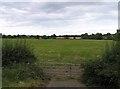 TL0875 : Fields near to Brington by Andrew Tatlow