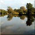 SO0328 : Reflections on the Usk, Brecon by John Grayson