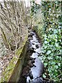 SJ9695 : Godley Brook by Gerald England