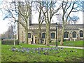 Dist:0.1km<br/>A fine display of crocuses enhance this view of one of the oldest churches in London. See also [[3370302]]