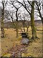 SE0103 : Dove Stone Drain by David Dixon