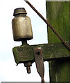TM3299 : Telegraph pole (detail) by Busseybridge Farm, Mundham by Evelyn Simak