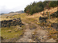 SE0103 : The Path Around Dove Stone Reservoir by David Dixon