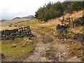 SE0103 : The Path Around Dove Stone Reservoir by David Dixon