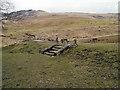 SE0204 : Picnic Area, Ashway Gap by David Dixon
