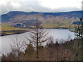 SE0103 : Dove Stone Reservoir from Holmfirth Road by David Dixon