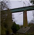 SJ9993 : Broadbottom Viaduct by Bobby Clegg