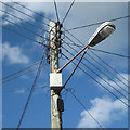 SX9273 : Typical top, Teignmouth pole, Hutchings Way by Robin Stott