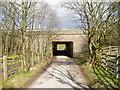 SJ9795 : Lane under the M67 Motorway by John Topping