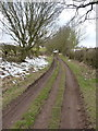 SK3124 : Bridleway near Loscoe Farm by Richard Law