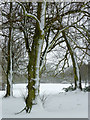 SO8995 : Late snow in Muchall Park, Wolverhampton by Roger  Kidd