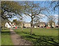 TL4070 : Willingham Green by John Sutton