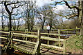 SJ6679 : Old and new bridges over Arley Brook by Gary Rogers