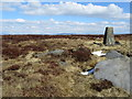 SD9739 : The Trig Point on Little Wolf Stones by Chris Heaton