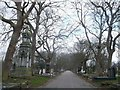 TQ4286 : Central Avenue, City of London Cemetery by David Anstiss