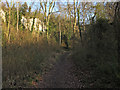 TQ6178 : Path through Grays Gorge by Roger Jones