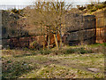 SJ5088 : Pex Hill Quarry by David Dixon