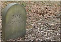 SE5006 : 'Bob' in the Pet Cemetery at Brodsworth Hall by Dave Pickersgill
