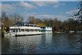 TQ1468 : Houseboats' on Tagg's Island : Week 15