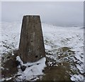 NO2406 : East Lomond Trigpoint by Becky Williamson