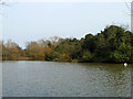 TQ4792 : Lake, Hainault Forest Country Park by Robin Webster
