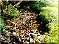 SO2901 : A rocky stream in Pontypool Park, Pontypool by John Grayson