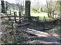 SJ9185 : Small footbridge (1), Ladybrook Valley Interest Trail by John Topping