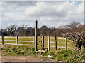 SJ7585 : Fence, Stile and Signpost, Bollin Valley Way by David Dixon