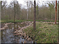 TL7930 : Pond in Shardlowe's Wood, part of Broaks Wood  by Roger Jones