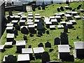 SH1726 : The graveyard of St Hywyn's Church : Week 17