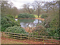 SK2671 : Pond at Chatsworth Park by Trevor Rickard