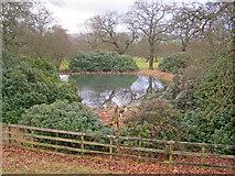 SK2671 : Pond at Chatsworth Park by Trevor Rickard