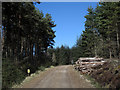 NH6575 : Timber stack beside forestry road by Trevor Littlewood